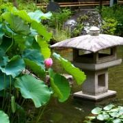 1407daishi